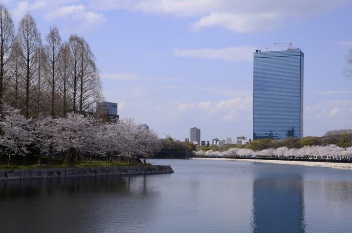 大阪城公園のお堀